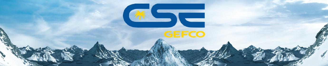 CSE GEFCO SA Vidéothèque
